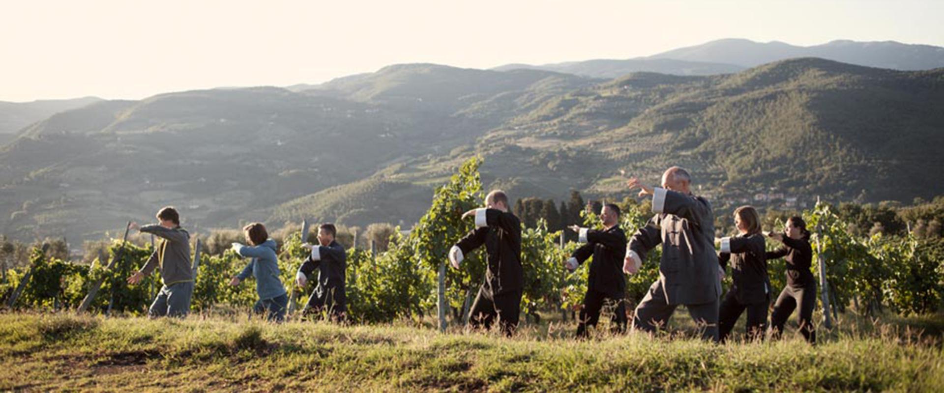 Gruppe beim Tai Chi Üben in der Toscana, Ferienkurs