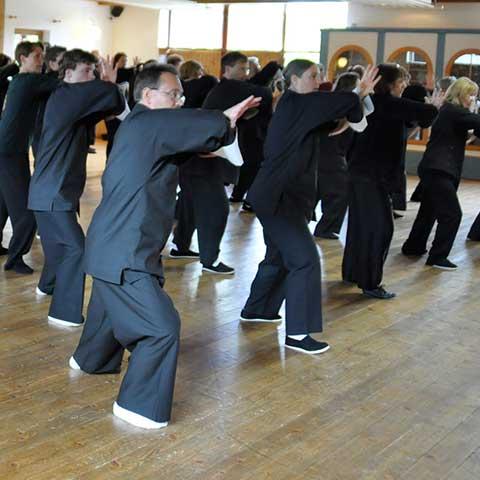 Tai Chi Form bein Master Chu Seminar - Foto: Christine Rühmer